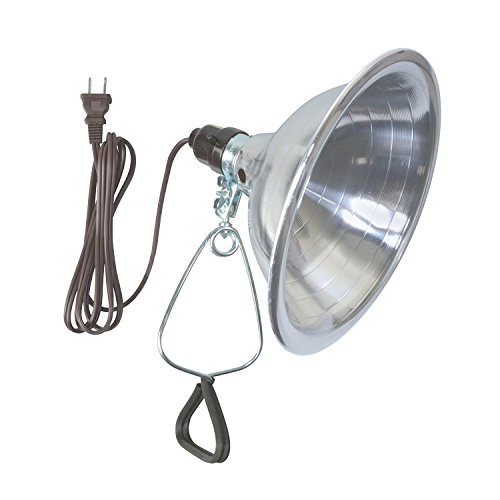 Woods 0151 18/2 SPT Clamp Lamp with 8.5 Inch Reflector, 150 Watt, 6 Foot Cord