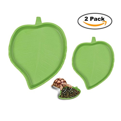 sxbest 2 Pack Pet Aquarium Leaf Reptile Food and Water Bowl Terrarium Dish Plate Supplies Lizards Tortoises or Small Reptiles (Tortoise Dish)
