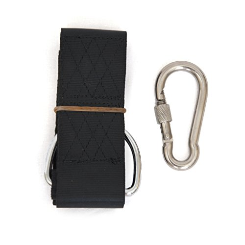 Swing Hanging Kit, 8 ft. Strap with Stainless Steel Connection Ring and Screw-Lock Carabiner, Fits Any Tree, Connects to Any Swing