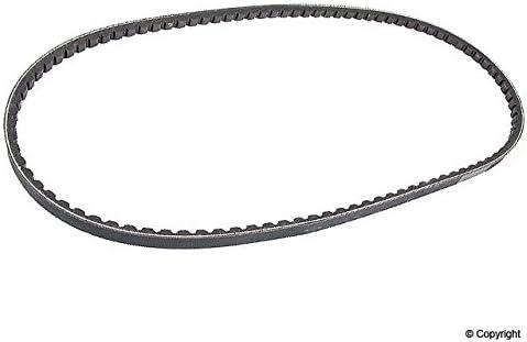 Accessory Drive Belt Volvo 973487