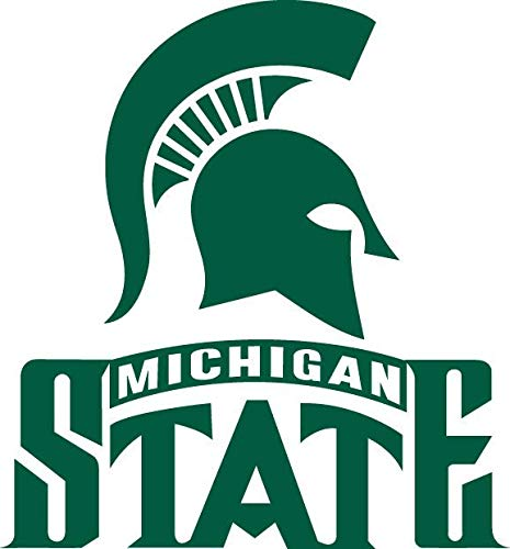 Michigan State University Hockey Spartans Logo Edible Cake