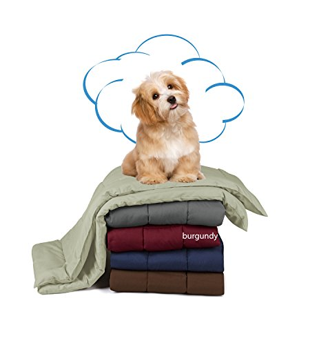 (Swift Home Pet Comforter, Dogs and Cats Blanket and Throw, Perfect for Home, Car, Pet Bed, Crate Pad, in a Pet Carrier, and More. Soft, Lightweight Warmth, Durable, and Washable - Burgundy, S/M)