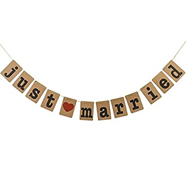 Just Married Banner for Wedding Decorations