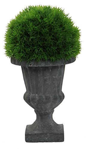 Admired By Nature ABN5P005-NTRL Faux Dill Topiary with in Urn, Small,