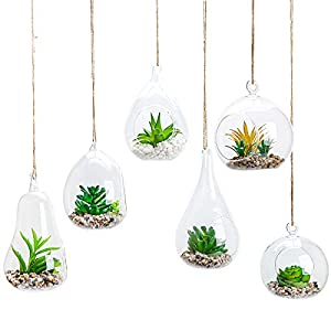 6pcs Glass Hanging Air Planter Terrarium Vase Holder for Succulent Air Ferns Candles, Home Office Decorations Gift Idea…