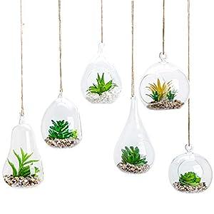 6pcs Glass Hanging Air Planter Terrarium Vase Holder for Succulent Air Ferns Candles, Glass Bubble Plant Holder, Home…