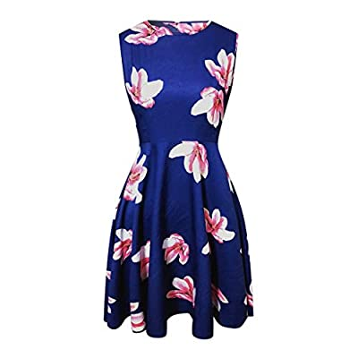 Xinantime Womens Hipster Floral Round Neck Sleeveless Dress Pocket Zipper Big Swing Dress: Clothing