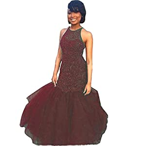 Zechun Women Mermaid Deep V Neck Long Sleeve Prom Dress Sheer Back Evening Gown
