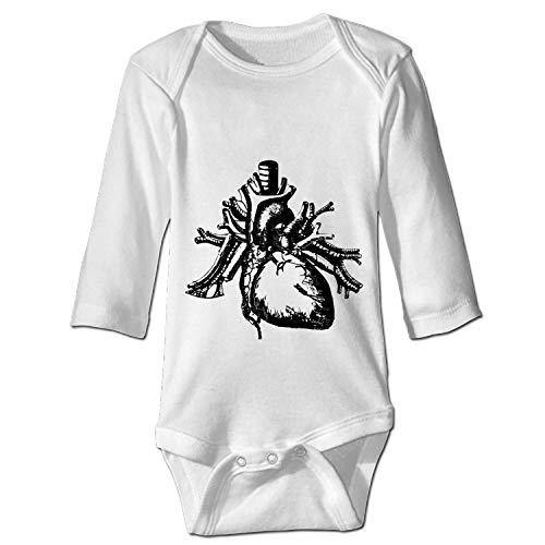WilBstrn Unisex Baby Long-Sleeve Onesies Heart Human Anatomy Health Halloween Cotton Bodysuits