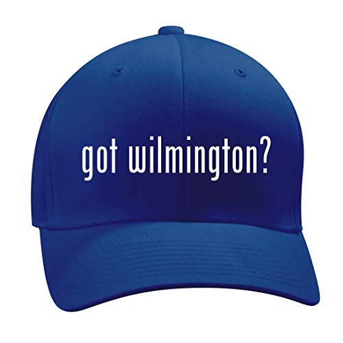 got Wilmington? - A Nice Men's Adult Baseball Hat Cap, Blue, Large/X-Large