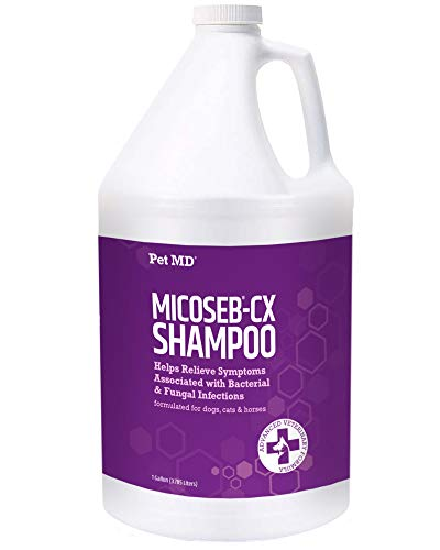 Pet MD Micoseb-CX Medicated Shampoo for Dogs, Cats, Horses with Miconazole, Chlorhexidine for Fungal & Bacterial Skin Infection Treatment of Yeast, Ringworm, Mange, Acne - 1 Gallon