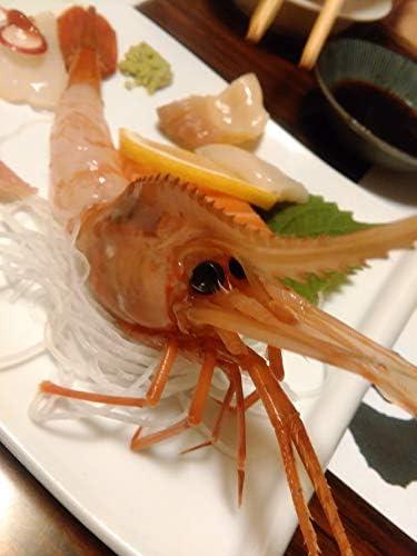 プリプリ ボタンエビ 500g 刺身 えび味噌 冷凍 ボタンエビ ボタン海老 ぼたんえび 北海道加工 お取り寄せ 海鮮