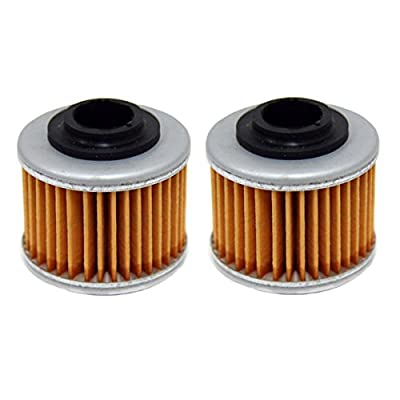 Factory Spec, FS-714, Can Am Rally 200 Oil Filter Filters 2 Pack: Automotive