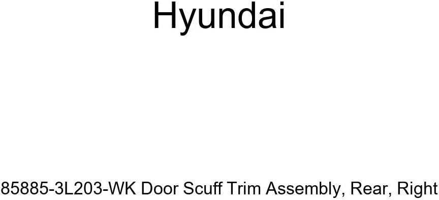 Genuine Hyundai 85885-3L203-WK Door Scuff Trim Assembly Rear Right