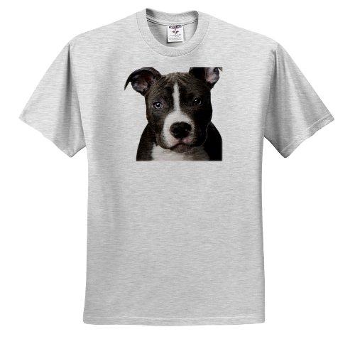 Pit Bull Terrier T-shirt - 3dRose Dogs Pitbull - American Pit Bull Terrier Puppy - T-Shirts - Adult Birch-Gray-T-Shirt 2XL (ts_4240_22)