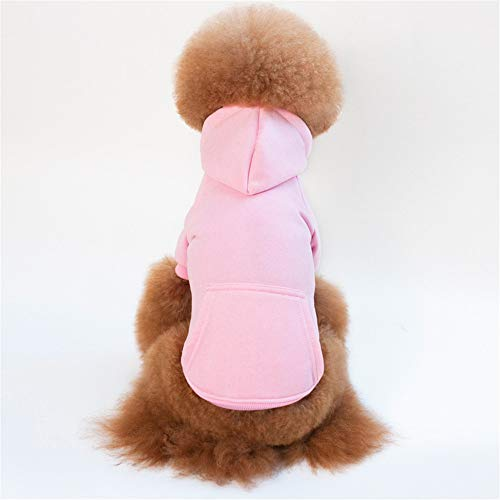 Jdogayncat Pet Supplies, Bright Colors, Teddy, Small Dogs, Autumn and Winter Clothes, Sweaters]()