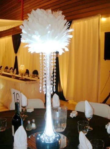 Centerpiece Feather Ball Large Wedding Ball Pompoms Kissing Ball 14 inches White ()