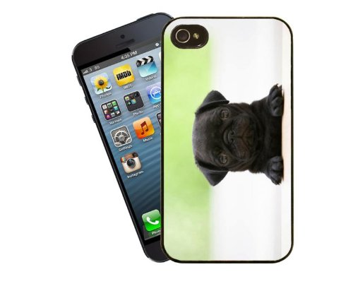 Hund Telefon Fall, design 8 – Cute Pug Puppy – Für Apple iPhone 5/5S – Cover von Eclipse Geschenk Ideen