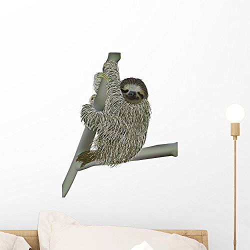 - Wallmonkeys WM230890 Smiling Sloth Hanging on a Branch Peel and Stick Wall Decals (18 in H x 14 in W), Small