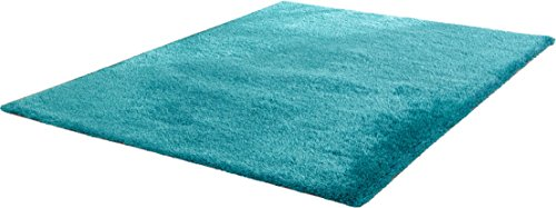 Chic Hand Tufted Rug - CHIC RUGZ Hand Tufted Shag Viscose Solid Area Rug, 2' x 3', Turquoise
