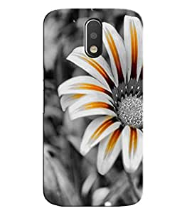 Moto G4 Play Printed back cover (Hard Back cover) perfect fit with printed sides