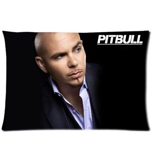 pitbull the singer - 2