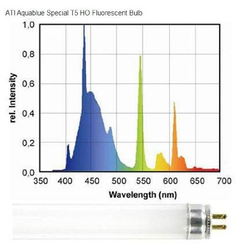 ATI 54 watt Aquablue Special T5 HO Lamp (460nm Actinic Bulb)