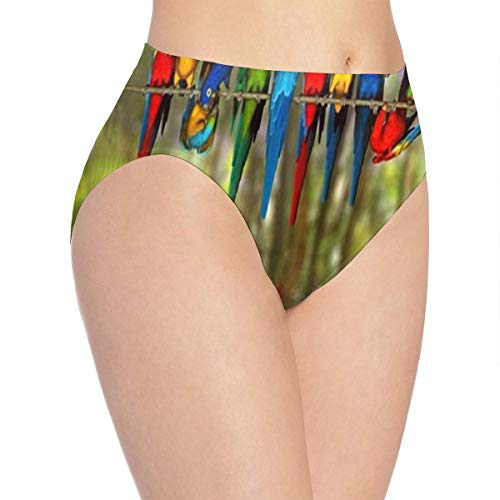 Girls Briefs Underwear Feather Collection Water Color Birds Great Breathable Easter Gift