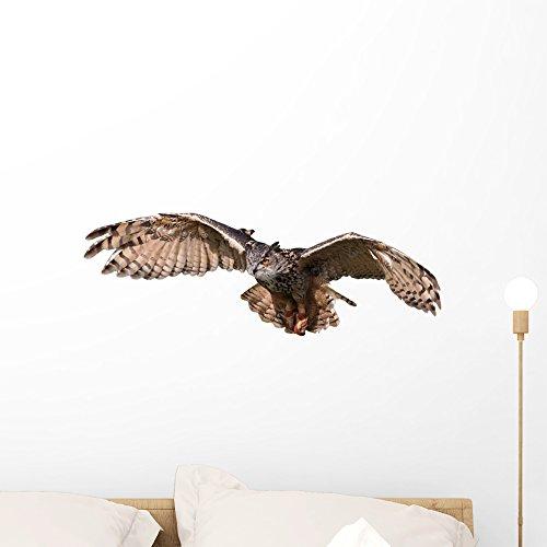 Wallmonkeys Flying Owl Peel and Stick Wall Decals WM21666...