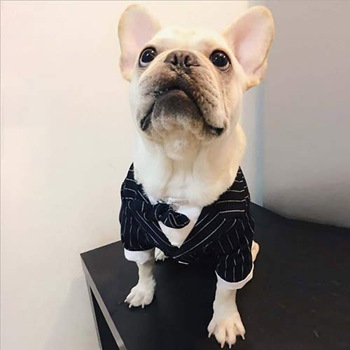 M Pet Small Dog Clothes Stylish Suit Bow Tie Costume Wedding Shirt Formal Tuxedo Dog Prince Wedding Suit for Wedding Party Or Halloween,M