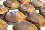 Dark Chocolate Dipped Apricots, 1 pound Box