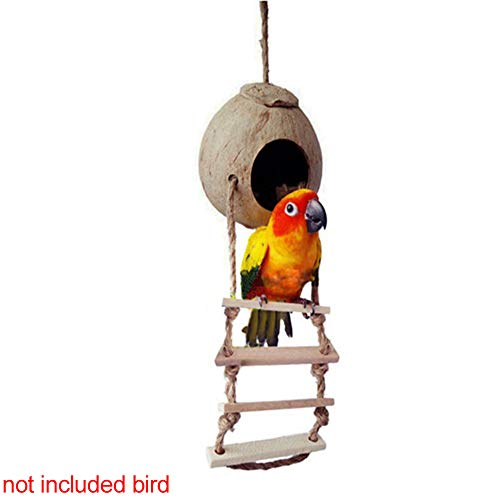 Urstory1 Natural Coconut Shell Cage Bird Nest House Bed with Ladder for Pet Parrot Budgie Parakeet Cockatiel Conure Canary Finch Dove Cage Hamster Rat Gerbil Mice Hanging Toy