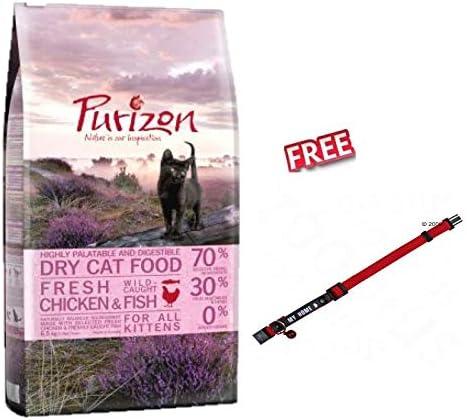 Purizon Kitten pollo y pescado 6,5 kg alimento seco para gatito alto en proteínas con 70% carne y pescado sin granos y equilibrio crecimiento y Gut Flora lactosa y sin gluten +