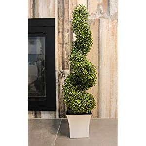 Admired by Nature Aritificial Boxwood 7