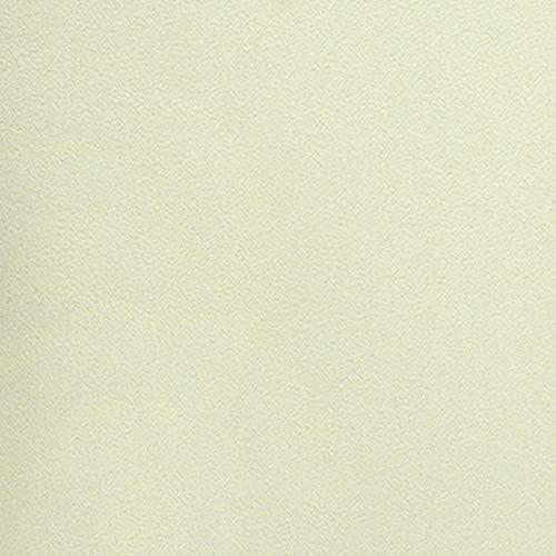 壁紙 生のり付き ペールグリーン 黄緑 無地 ルノン 販売単位1m RF-6224