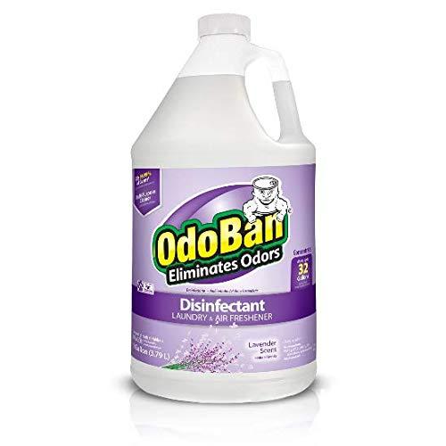 (OdoBan Odor Eliminator and Disinfectant Concentrate, Lavender (1))