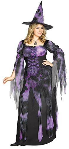 Fun World Women's Plus Size Starlight Witch Costume, Multi, X-Large