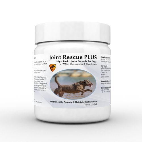 Joint Rescue PLUS - Glucosamine, Chondroitin, & MSM for Dogs - Superior Joint Powder Formula w/NO EXTRA FILLERS - by Pet Health Remedies
