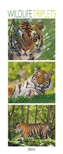 Wildlife Triplets 2015: PhotoArt Vertikal Kalender