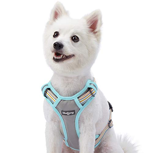 Blueberry Pet 9 Colors Soft & Comfy 3M Reflective Multi-Colored Stripe Padded Dog Harness Vest, Chest Girth 22-26.5, Neck 17.5-26, Pastel Blue & Beige, Medium, Mesh Harnesses for Dogs