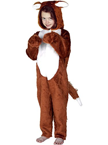 Fantastic Mr Fox Halloween Costume (Fox Costume for Kids 8-10 Yrs)