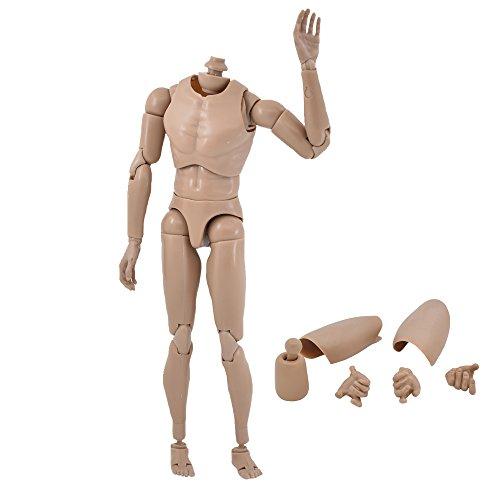Scale Head (【ElekFX】Narrow Shoulder 1:6 Scale Action Figure Male Body Toys for TTM18 TTM19 B001)