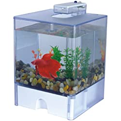 Wrapables Aqua Cube Betta Aquarium - 0.8 Gallon