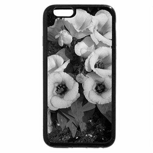 iPhone 6S Plus Case, iPhone 6 Plus Case (Black & White) - Colorful Flowers a garden makeup 72