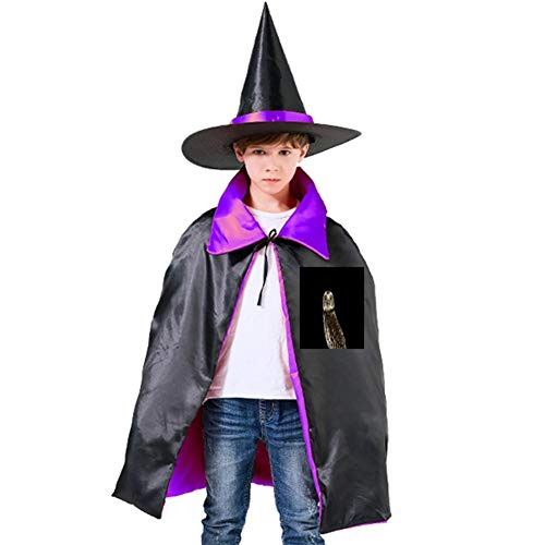 Owls in The Night Halloween Shawl and Witch Hat for Children Kids Purple ()