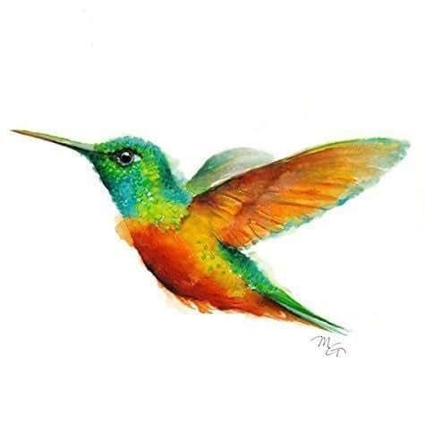 Amazon.com: Hummingbird Watercolor Giclee Print: Handmade