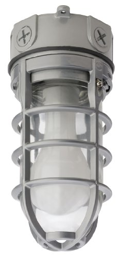 Lithonia Lighting OVT 150I 120 M6 A21 150-Watt Vapor Tight Incandescent Lamp, Glass Globe, Guard
