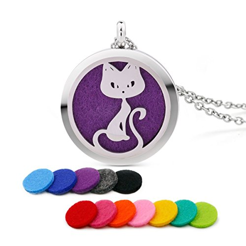 Stainless Steel Love Pet Cat Aromatherapy Essential Oil Diffuser Necklace Carving Locket Pendant,10 Felt Pads