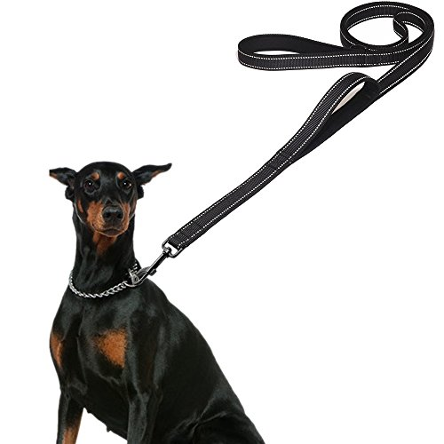 TWOPJ Dog Leash for Large Dogs, 2 Handles for Extra Control, 6 FT Long with Reflective Stitch for Night Walking