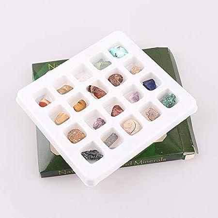 AITELEI - Colección educativa de piedras naturales y minerales en caja, colección de piedras y piedras de piedras naturales, kit de geología para niños en una caja expositora: Amazon.es: Hogar